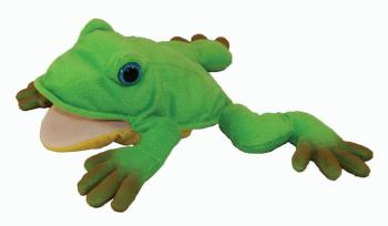 Freddie the Frog Teacher's Puppet (HL-09971509)