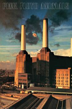 Pink Floyd - Animals - Wall Poster: 24 inches x 36 inches (HL-00149834)